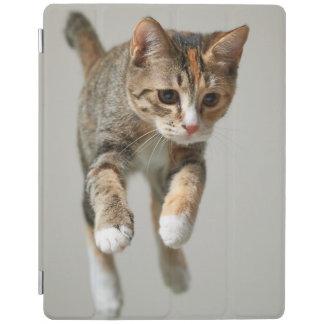 Protection iPad Sauter de chat de calicot