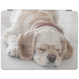 Protection iPad Sommeil de chien de cocker