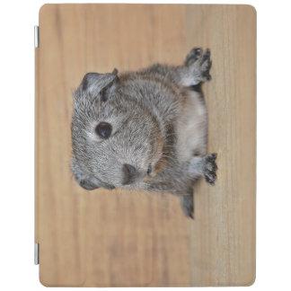 Protection iPad Un cobaye gris mignon sur le bois de Brown