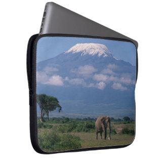 Protection Pour Ordinateur Portable Bel éléphant du mont Kilimandjaro
