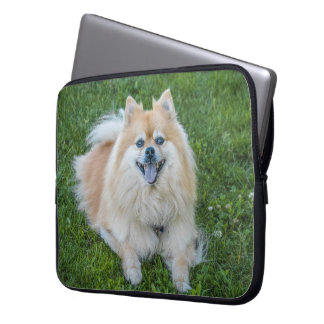 Protection Pour Ordinateur Portable Chien crème mignon de Pomeranian de sable dans