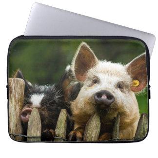 Protection Pour Ordinateur Portable Deux porcs - ferme de porc - fermes de porc