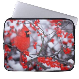 Protection Pour Ordinateur Portable Mâle cardinal du nord, hiver, IL