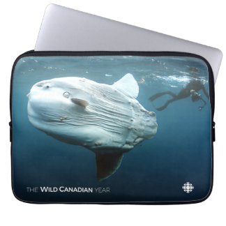 Protection Pour Ordinateur Portable Mola de Mola