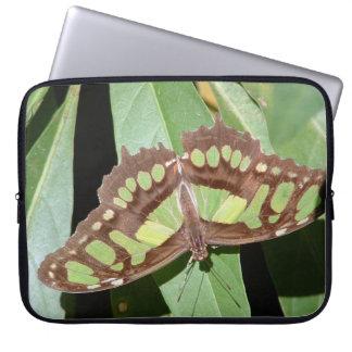 Protection Pour Ordinateur Portable Papillon en Monteverde Costa Rica
