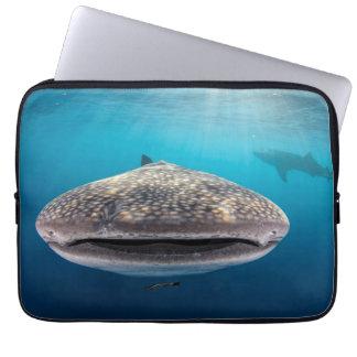Protection Pour Ordinateur Portable Requin de baleine, vue de face, Indonésie