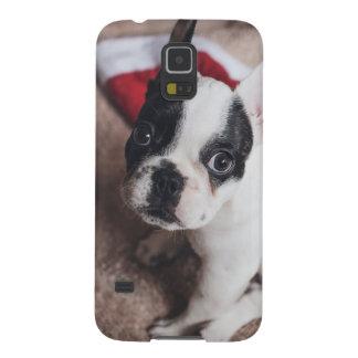 Protections Galaxy S5 Chien du père noël - carlin drôle - poursuivez
