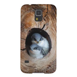 Protections Galaxy S5 Oiseaux de bébé