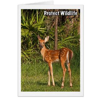 Protégez la faune carte de vœux