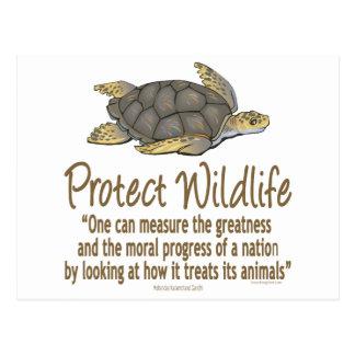 Protégez les tortues de mer carte postale