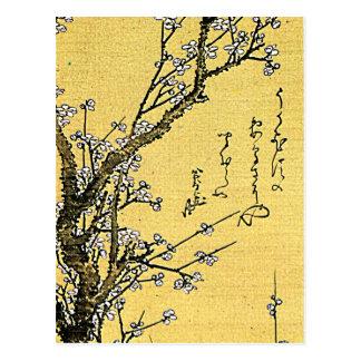 Prune fleurissante carte postale