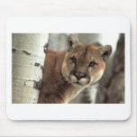 Puma frappant une pose tapis de souris