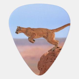 Puma Onglet De Guitare