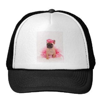 Puppy french bulldog disguised casquette de camionneur