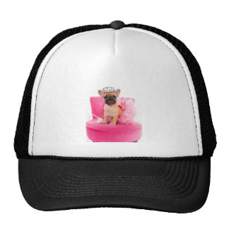 Puppy french bulldog disguised casquettes de camionneur