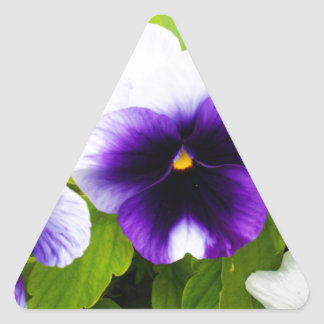 Purple_And_White_Pansies, _ Sticker Triangulaire