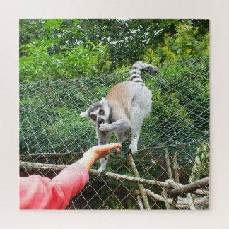 Puzzle Alimentation d'un lémur