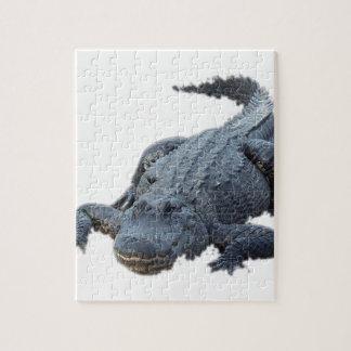 Puzzle Alligator réaliste