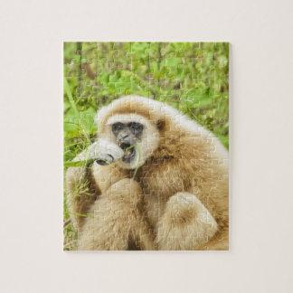 Puzzle Animal drôle de singe