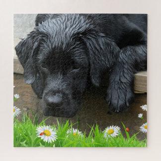Puzzle Appréciez les petites choses - Labrador noir