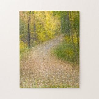 Puzzle Arbres dans des couleurs d'automne et la voie