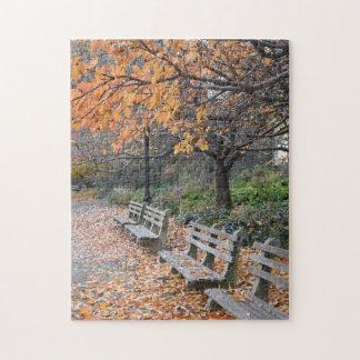Puzzle Automne en photo du parc NYC de rive de New York