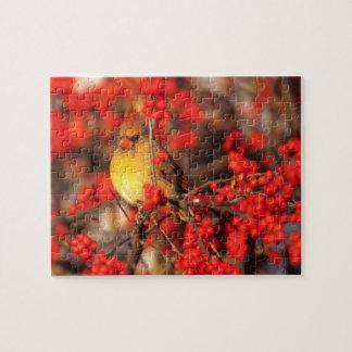 Puzzle Baies femelles et rouges cardinales, IL