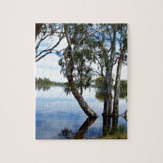 Puzzle Beauté des arbres de gomme,