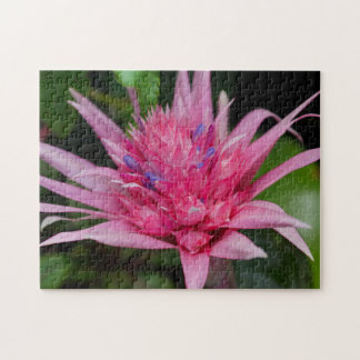 Puzzle Beauté rose