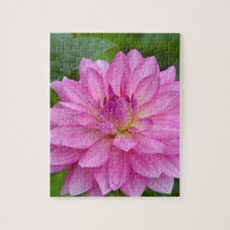 Puzzle Beauté rose de dahlia