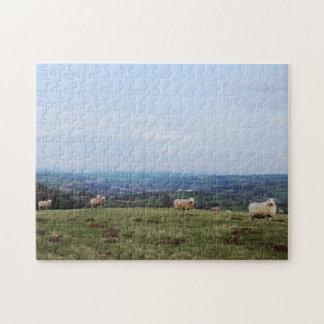 Puzzle Beaux moutons de Gallois de paysage de vue de