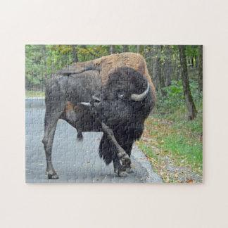 Puzzle Bison drôle de Taureau léchant ses testicules