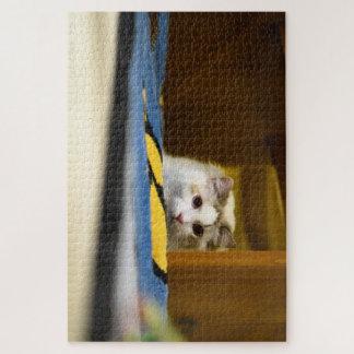 Puzzle blanc de chat de Ragdoll
