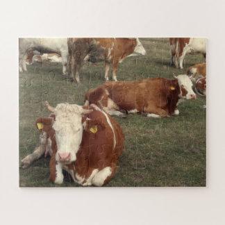 Puzzle Brown et vaches blanches