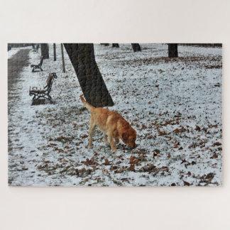 Puzzle Brown Labrador dans la neige