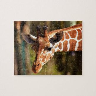 Puzzle Brown mignon et portrait blanc de visage de girafe