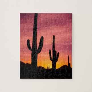 Puzzle Cactus de Saguaro au lever de soleil, Arizona