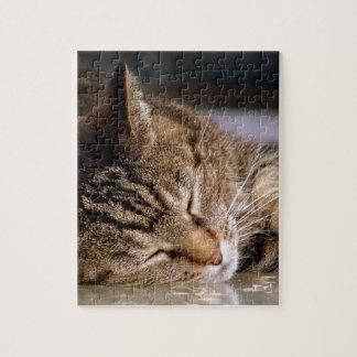 Puzzle Cadeaux et habillement d'amoureux des chats
