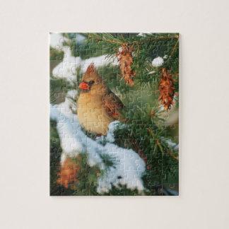 Puzzle Cardinal du nord dans l'arbre, l'Illinois