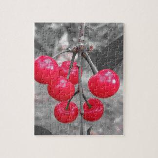 Puzzle Cerises rouges de Montmorency sur l'arbre dans le