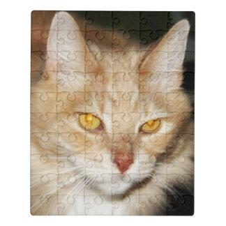 Puzzle Chat de ragondin du Maine