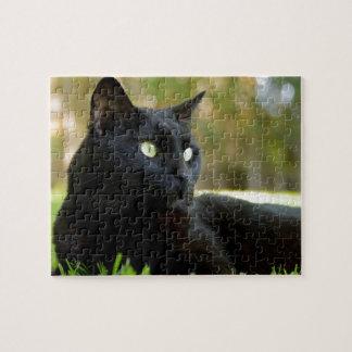 Puzzle Chat noir aux yeux verts appréciant l'extérieur