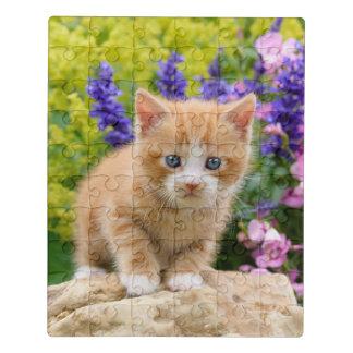 Puzzle Chaton pelucheux mignon de chat de bébé de