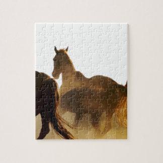 Puzzle cheval de lasso de cowboy