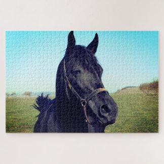 Puzzle Cheval noir magnifique