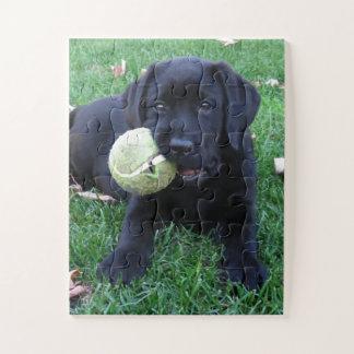 Puzzle Chiot noir de Labrador - boule de jeu