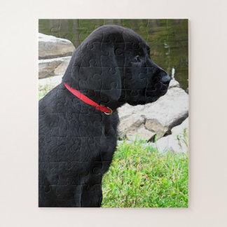 Puzzle Chiot noir de Labrador - peu de collier rouge