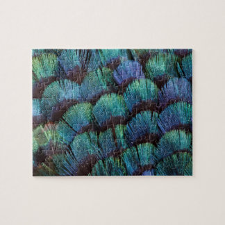 Puzzle Conception bleu-vert de plume de faisan