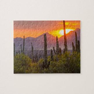 Puzzle Coucher du soleil de cactus de désert, Arizona