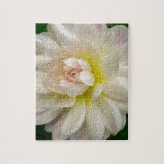 Puzzle Dahlia blanc